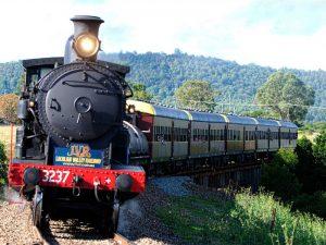 Coffs Steam Train Rides